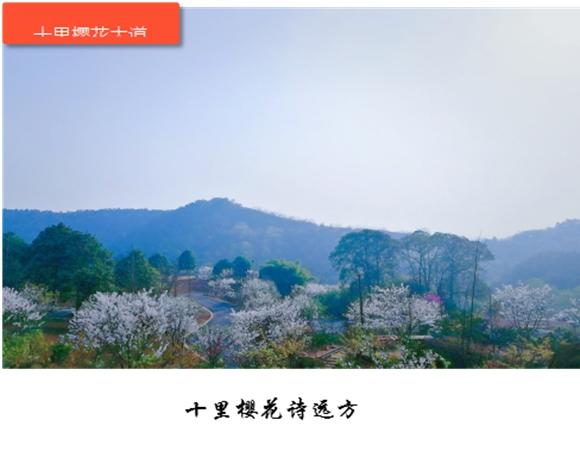 图片1610.jpg